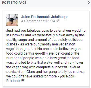 testimonial for vegan wedding
